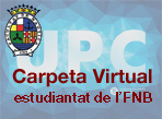 Carpeta Virtual FNB